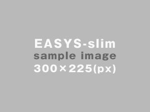 sample_image_300x225